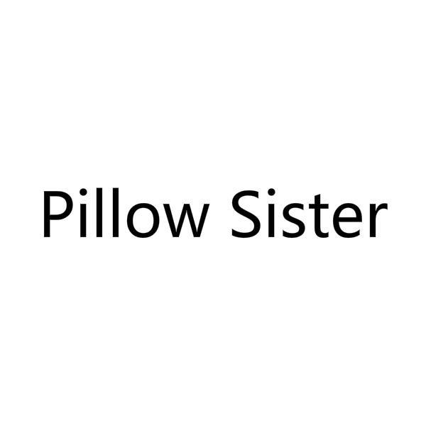 PILLOW SISTER 18 皮革箱包 55646594